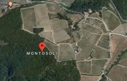 Montosoli, the northern and refined soul of Montalcino