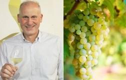 Paolo-Fiorini-presidente-consorzio-tutela-vini-Lessini-Durello+uva-durella