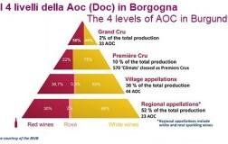 Piramide Qualitativa vini borgogna