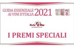Guida Essenziale 2021 i premi speciali