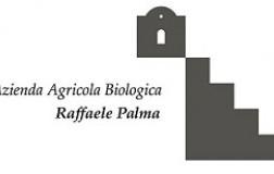 Raffaele-Palma.jpg