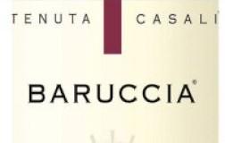 Tenuta Casali Romagna Sangiovese San Vicinio Baruccia 2017