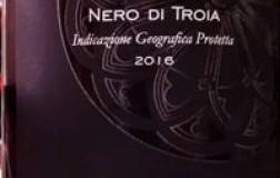 Placido Volpone Puglia Rosone 2016