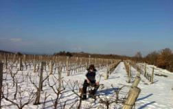 Skerk, Malvasia in bucce (1): l'intervista