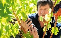 Stefano Mancinelli produttore vino Marche