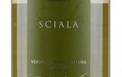 surrau Sciala vermentino di gallura vino bianco sardegna