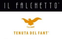 Tenuta Il Falchetto cantina vini Piemonte logo