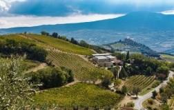 Tenuta-San-GIorgio-Montalcino famiglia Tipa Bertarelli Collemassari