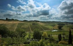 Tenuta Santa Caterina vigneti Piemonte