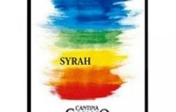 Cortona Syrah Terrasolla 2017 Canaio