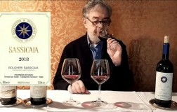 Video Sassicaia Daniele Cernilli DoctorWine