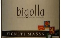 Vigneti Massa Colli Tortonesi Barbera Bigolla 2005