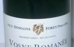 Vosne Romanée 1er Cru Les Gaudichots 2009 Domaine Forey