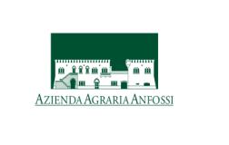 Anfossi logo