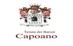Baroni Capoano Logo