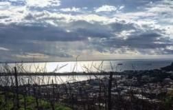 Cantine del Mare, patrimonio dei Campi Flegrei