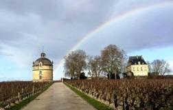 chateau latour cantina vini francia panorama