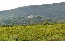 Chiesina di Lacona Isola d'Elba cantina