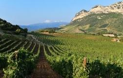 Corsica Domaine Gentile