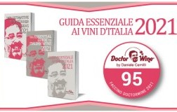 Faccino DoctorWine 2021 a 95/100