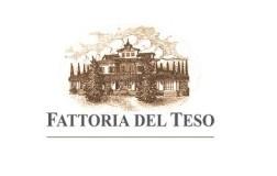 fattoria del teso cantina vini toscana logo doctorwine