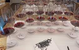 Le Macchiole Bolgheri Rosso verticale bicchieri