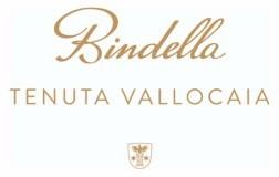 logo bindella cantina vino