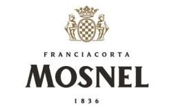 logo mosnel