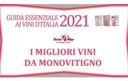Guida Essenziale 2021 i migliori vini da monovitigno