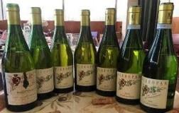 panoramica bottiglie calvarino