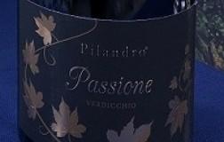 Pilandro Verdicchio dei Castelli di Jesi Classico Superiore Passione vino bianco Marche