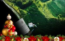 Top 10 Prosecco Superiore