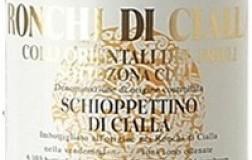 Ronchi di Cialla Schioppettino di Cialla Friuli Colli Orientali sottozona Cialla 2015