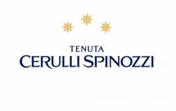 Cerulli Spinozzi Logo