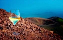 Vini minerali