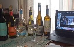 Web Tasting Maremma Toscana Vermentino Stefania Vinciguerra