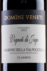 Domini Veneti Amarone della Valpolicella Classico Vigneti di Jago 2013