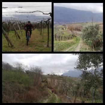 Camaiola Ciclo Tour'