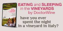 https://shop.doctorwine.it/prodotti/ebook/eating-and-sleeping-in-the-vineyards-by-doctorwine